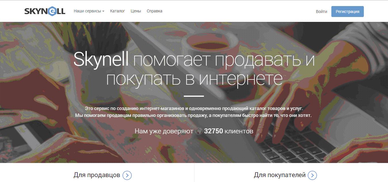 Конструктор интернет-магазинов и сайтов от Skynell